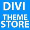 Divi Theme Store