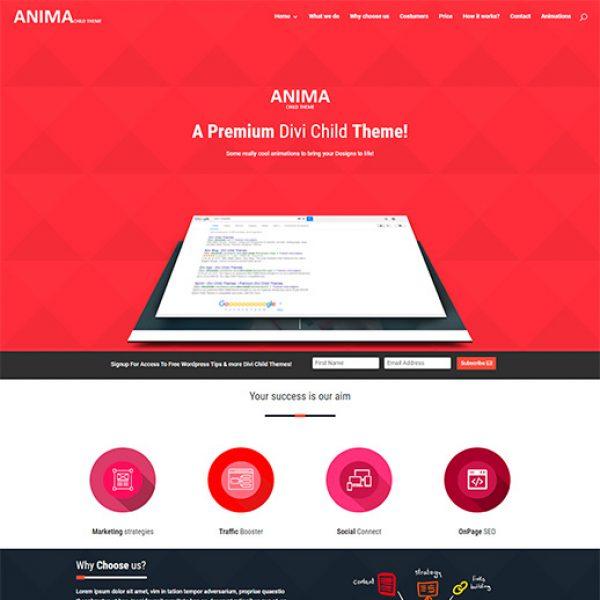 anima-pro-divi-child-theme