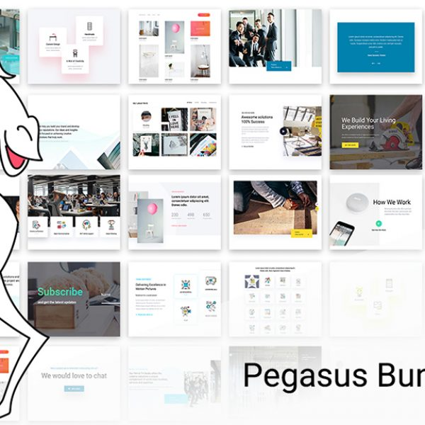 divi-theme-pegasus-ui-kit-slider