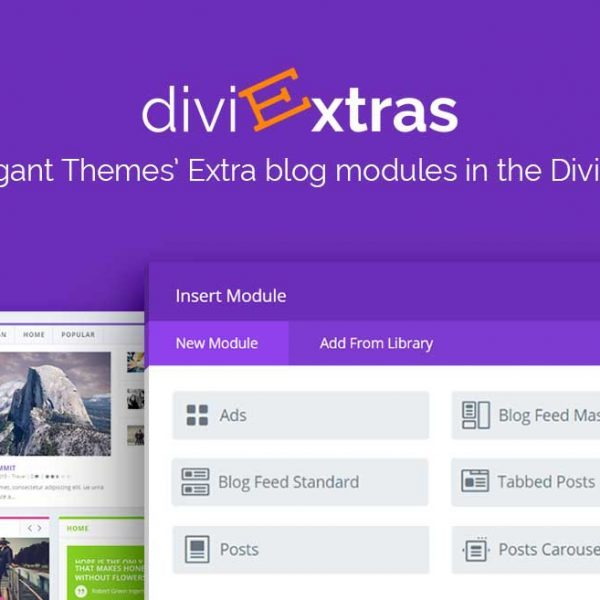 divi_space_plugin_divi_extras