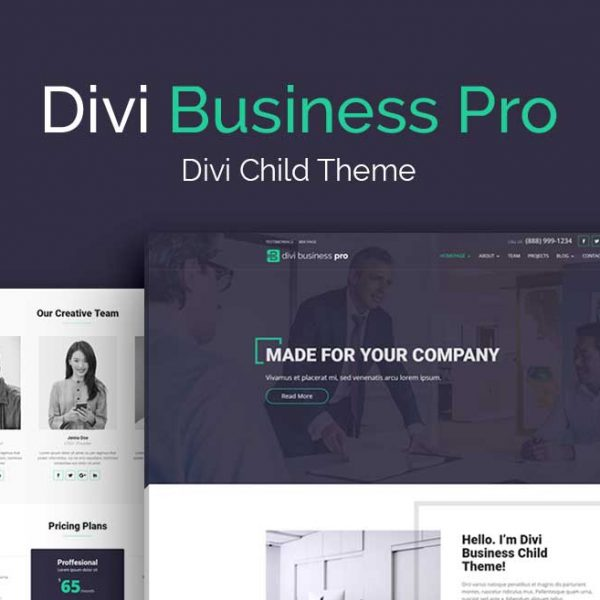 divi_space_theme_business_pro-1