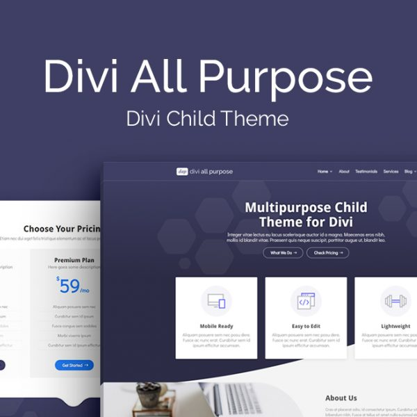 divi_space_theme_dap