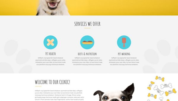 petshop-veterinary-petcare-divi-child-theme